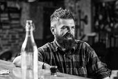 Friday Evening. Hipster Relaxing At Bar. Bar Relaxing Place To Have Drink And Relax. Man With Beard  poster