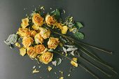 Dry Bouquet Of Yellow Roses On A Black Background, Frustration At The End Of The Holidays, A Sad Day poster