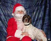 Dog Begging Santa For Presents