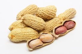 picture of ground nut  - Peanut shells and nut on white background - JPG