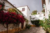 Medieval Houses In Ancient City Of Obidos, Portugal