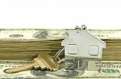 House Shaped Keychain With Money