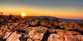 Melville sunset