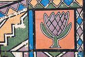 Ndebele Protea