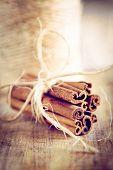 Vintage Christmas Cinnamon Sticks