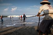 PADANG - AUGUST 25: Fishermen work as a team pull in the fishing nets from the sea in Padang, West S