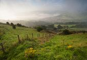 pic of swales  - misty yorkshire dales valley in autumn early morning