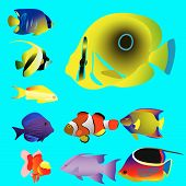Ten Bright Oceanic Small Fishes