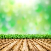 Background room interior. Fresh spring green field grass with blue bokeh and sunlight and wood floor