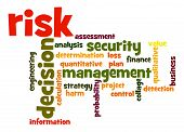 Risk Word Cloud