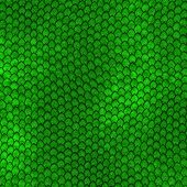 foto of jungle snake  - Green Dragon scales pattern  - JPG
