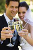 Happy young newlywed couple toasting champagne flutes at the park