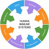 Immune System Word Circle Concept
