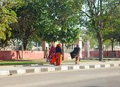 JAIPUR INDIA - JANUARY 29: Women in bright saris going on the street on January 29 2014 in Jaipur In