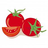 Tomatoes Vector Illustration. Simple Illustration of two tomatoes and one part isolated on white bac