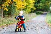 foto of four-wheel drive  - Cute active little boy driving on his bike in autumn forest - JPG