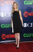 LOS ANGELES - JUL 17:  Lisa Kudrow arrives to the CBS-CW-Showtime Summer TCA Press Tour 2014  on Jul