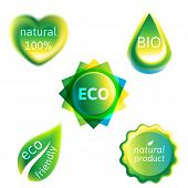 5 ecology labels over white background