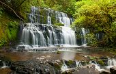 Purakaunui Falls is a beautiful small waterfall on the Catlins (South of the Southern island), New Z