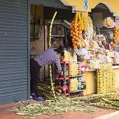 Cleaning Sugar Cane in Banos, Ecuador