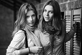 Two young fashion girls at the brick wall