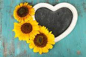 Beautiful sunflowers blackboard blank on wooden background
