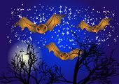 Bats In Night Sky