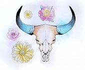 pic of skull bones  - Vector illustration of the skull of a bull with flowers and splashes of watercolor - JPG
