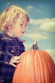 Toddler boy picking a big pumpkin
