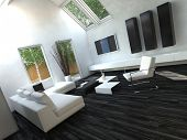 Pure White Sofa in Beautiful Living Room with Black Flooring and White Walls
