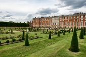 picture of century plant  - The Privy Garden and Hampton Court Palace near London - JPG
