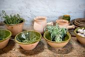 Fresh herbs and garlic displayed in earthenware bowls on an old rustic kitchen counter ready to be u