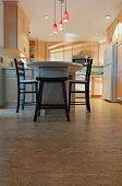 Remodeled Kitchen And Cork Floors
