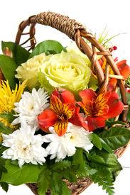 stock photo of gift basket  - close up flower basket isolated on white - JPG
