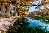 Fall Trees on the Frio River at Garner State Park, Texas