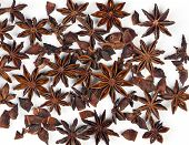 ������, ������: Star Anise Star Aniseed Or Chinese Star Anise