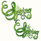 Hand drawn Spring Inscription Pattern