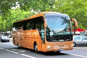 Man R07 Lion's Coach