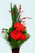 image of gerbera daisy  - Bouquet with Daisy flower red gerbera and green leaves - JPG