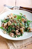 image of rocket salad  - Tuna and rocket salad on plate - JPG