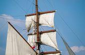 Greenwich Tall Ship Regatta