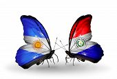 Two Butterflies With Flags On Wings As Symbol Of Relations Argentina And Paraguay