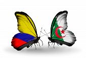 Two Butterflies With Flags On Wings As Symbol Of Relations Columbia And Algeria
