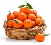 Meny Tangerines In A Basket