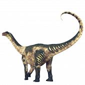 stock photo of behemoth  - Antarctosaurus was a titanosaur sauropod that lived in South America in the Cretaceous Period - JPG