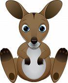 picture of kangaroo  - Vector illustration - JPG
