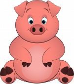 image of baby pig  - pig on a white background - JPG