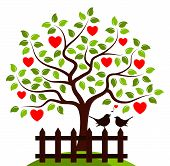 image of bird fence  - vector heart tree and picket fence with couple of birds isolated on white background - JPG