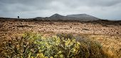 image of canary-islands  - beautiful mountain landscape on the island of Lanzarote - JPG