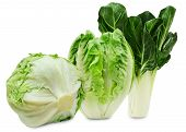 picture of iceberg lettuce  - Set of three varieties of fresh salad lettuce isolated on a white background - JPG